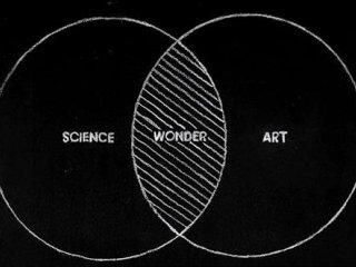 SEO علم است یا هنر ؟